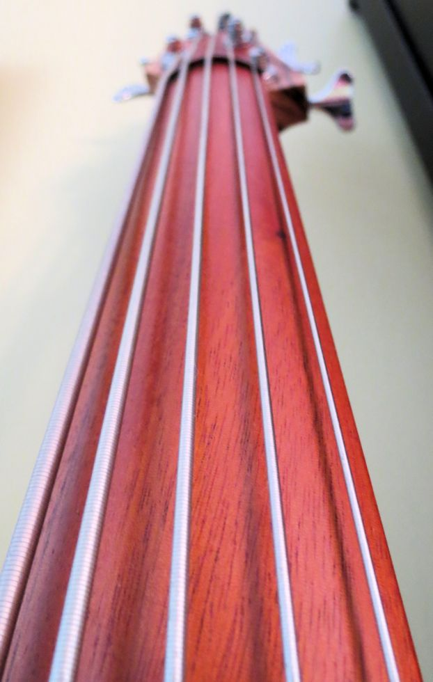 Ergo electric upright 5-string bass