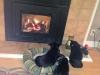 fireplace_pets