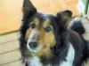 sophie nov 2008