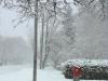 Snow, Feb 18, 2012
