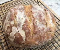 sourdough_01.jpg