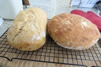 two_loaves_mar_02.jpg